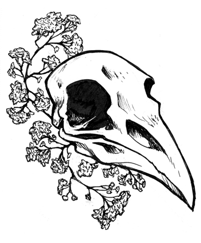 414x500 Tumblr Drawings Raven Skull