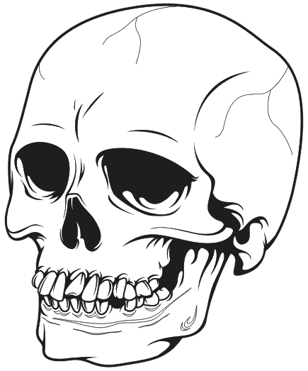 435x523 How To Draw A Skull