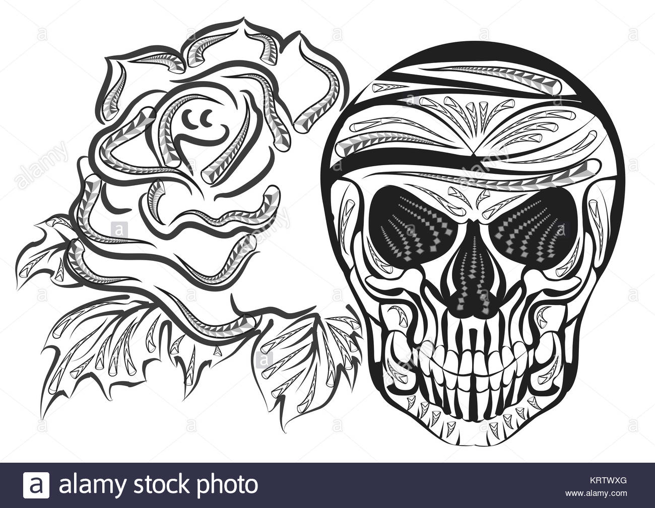 1300x1009 Skull Drawing Black And White Stock Photos Amp Images