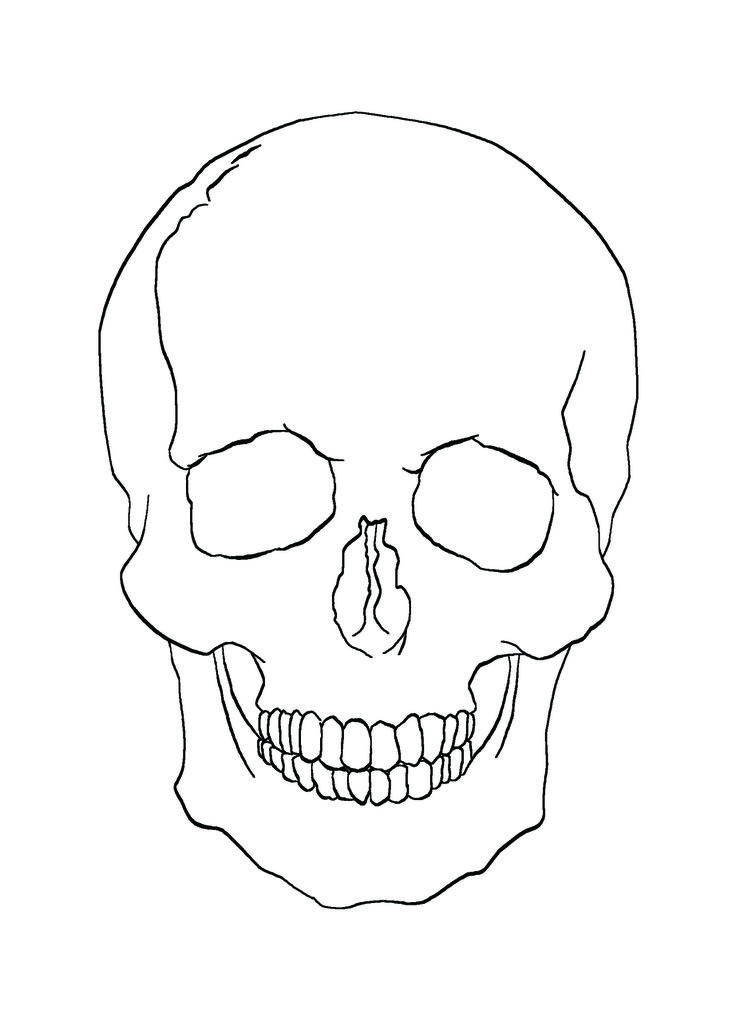 Free Simple Skull Drawing, Download Free Clip Art, Free ... |Skull Outline Drawings