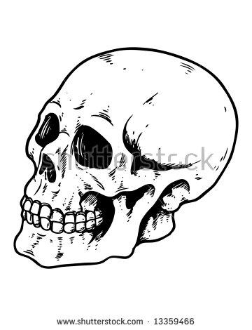 360x470 Image Result For Skulls Profile Awards Designs Profile