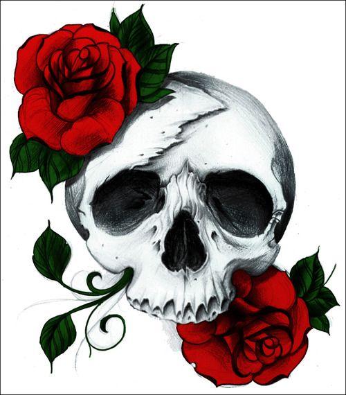 Skull Roses Drawing