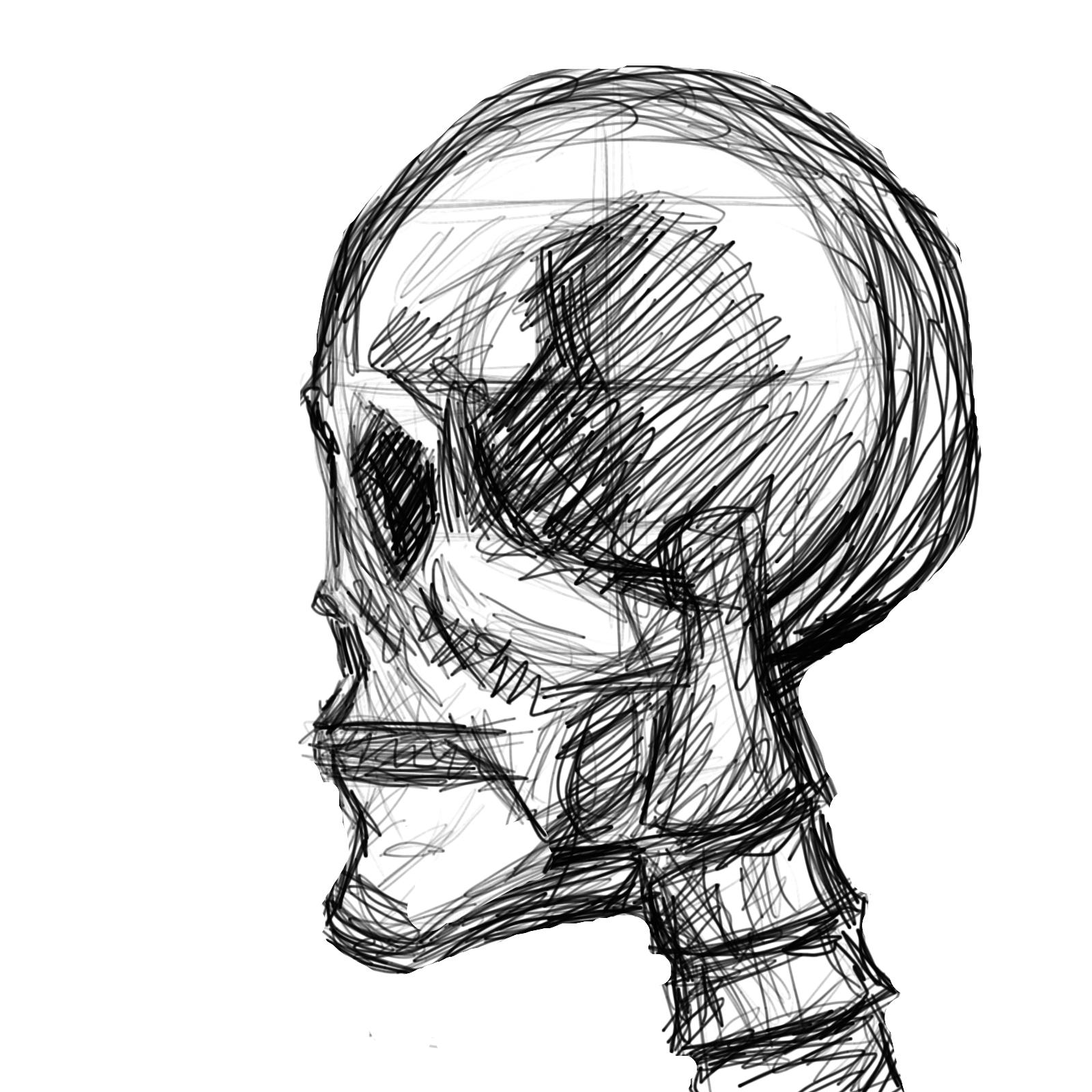 1600x1600 Human Skull Side View By E40godumdum0
