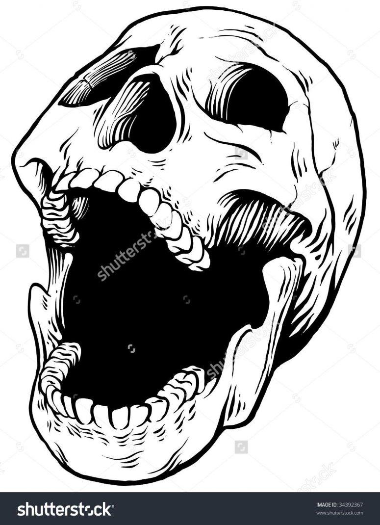 775x1070 Best Skull Pictures