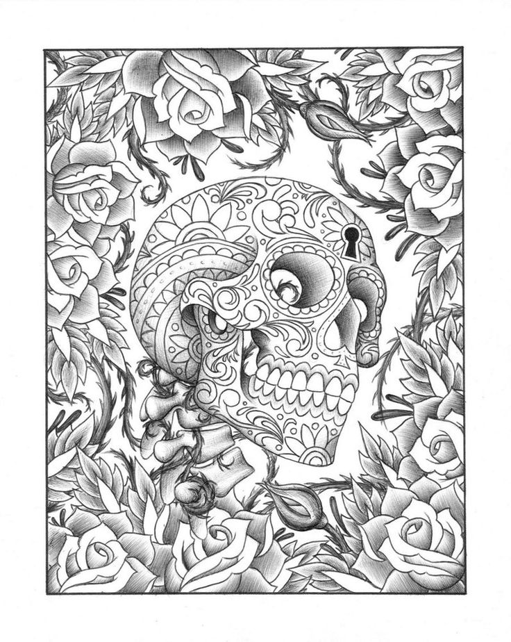 Skulls And Roses Drawing