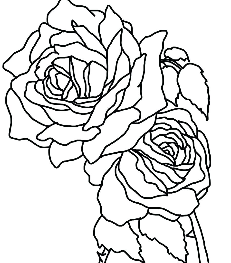 948x1080 Coloring Skulls And Roses Coloring Pages