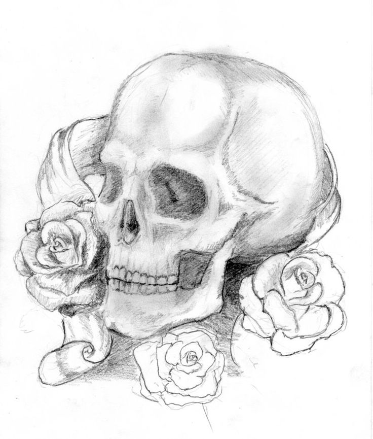 736x865 Cool Skull And Rose Drawings