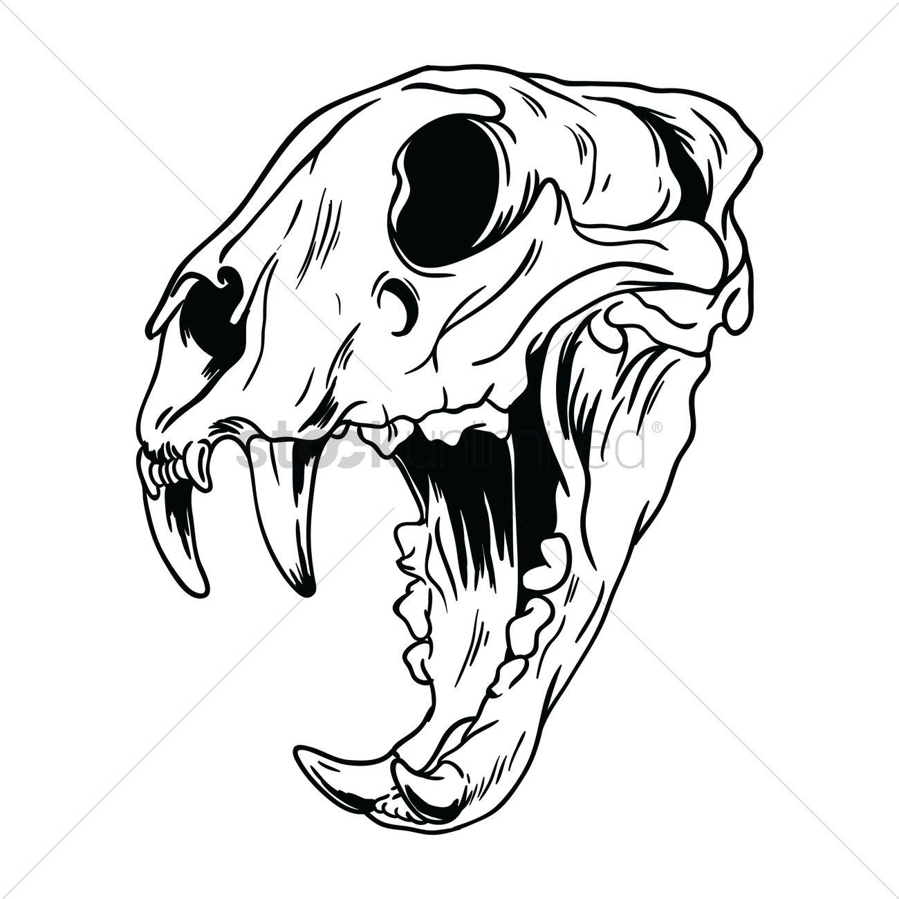1300x1300 Free Tiger Skull Vector Image
