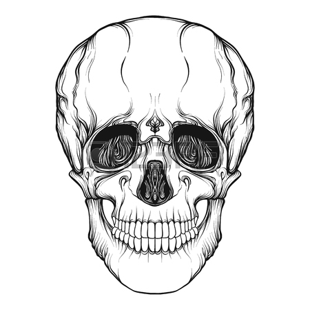 450x450 Human Skull Realistic Hand Drawing Isolated Royalty Free Cliparts