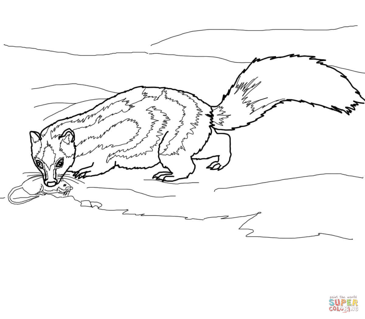 1200x1048 Spotted Skunk Catches A Rat Coloring Page Free Printable