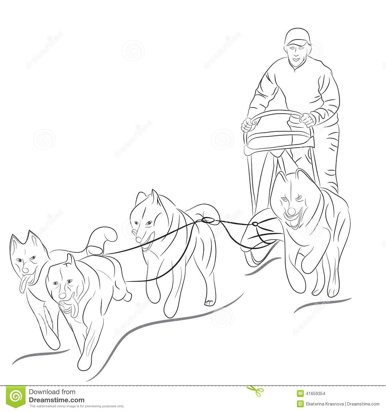 1300x1390 Hand Drawn Illustration Of Dogs Pulling A Sled Iditarod