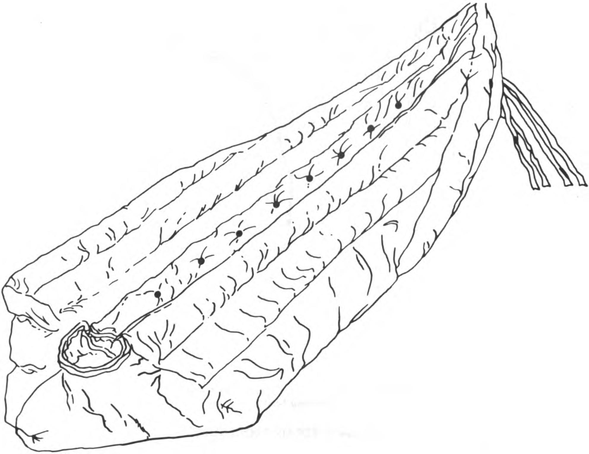 1984x1532 Extreme Cold Weather Sleeping Bag