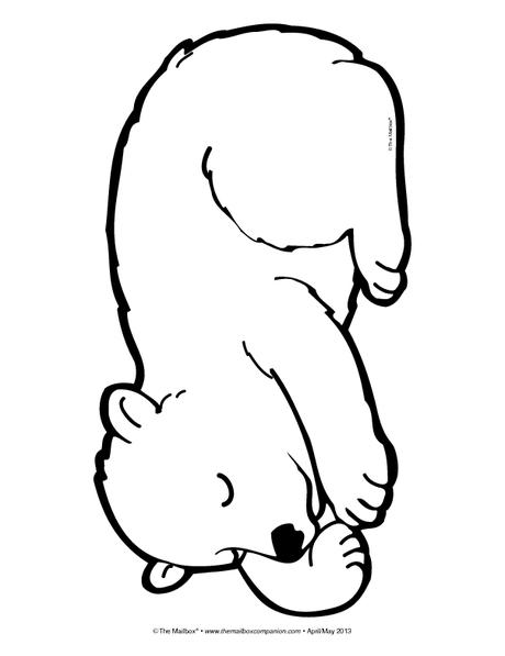 460x597 Sleeping Bear