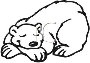 Sleeping Bear Drawing at GetDrawingscom Free for personal use