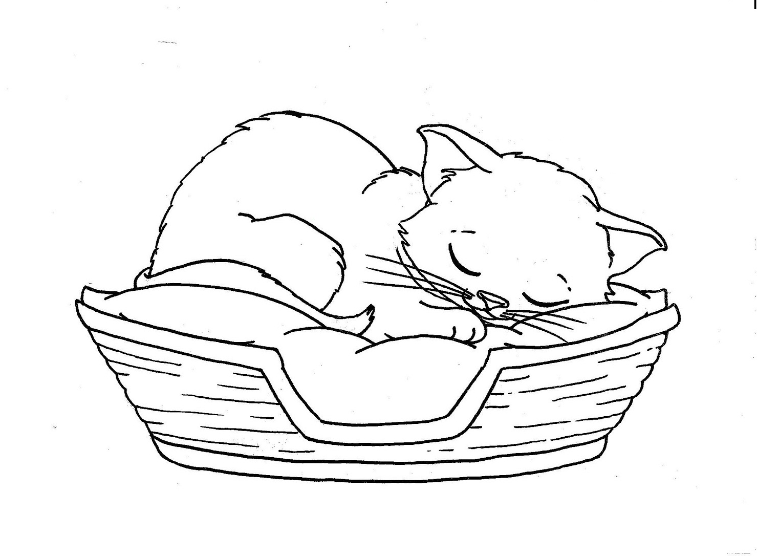 1479x1086 Cats Sleeping Coloring Picture For Kids Embroidery, Colouring