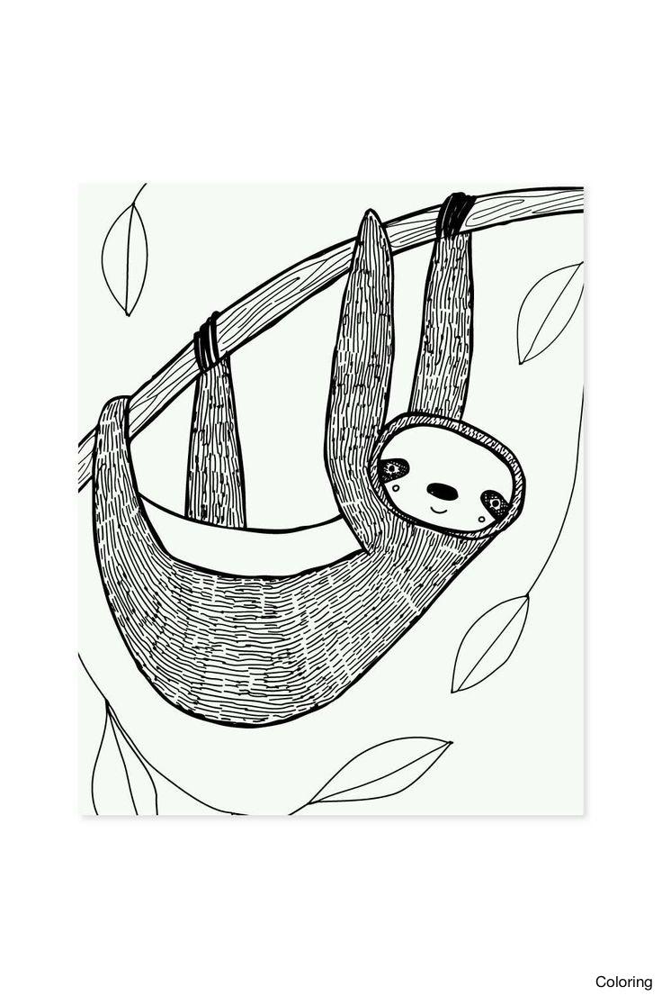736x1106 How To Draw Cute Sea Animals A Animal Stepstep Cartoon Sloth