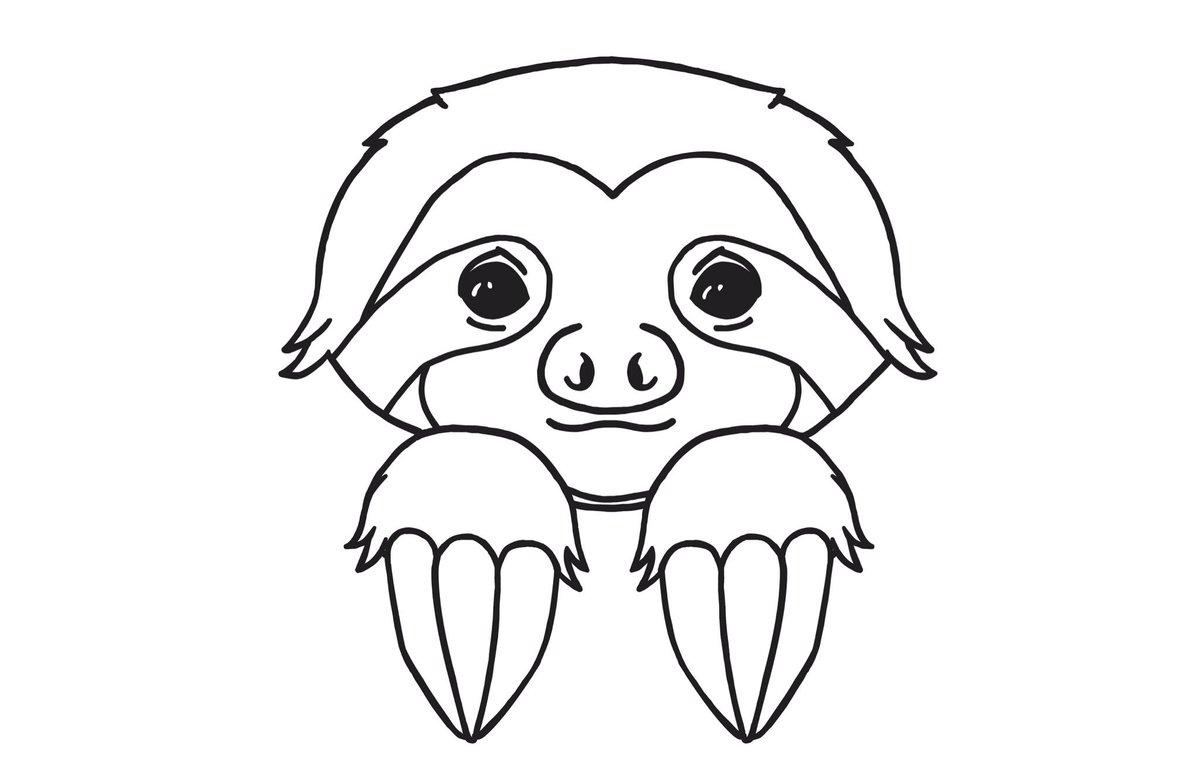 1200x761 Sloth Nation (@shopslothinc) Twitter