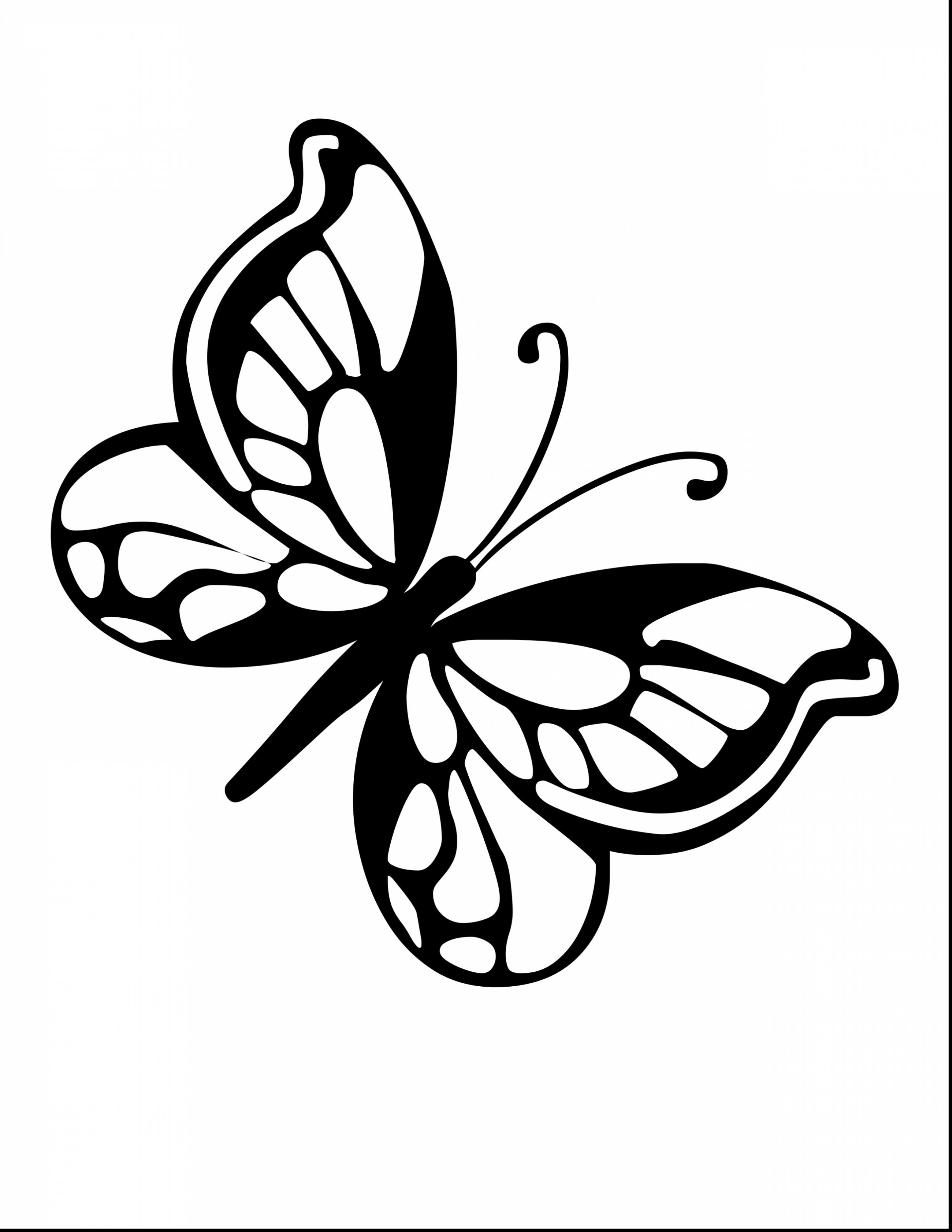 2805x3630 Excellent Butterfly Coloring Pages With