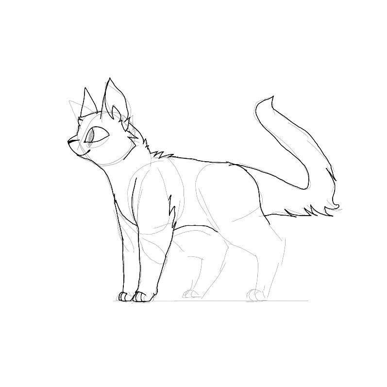 Standing Cat Drawing