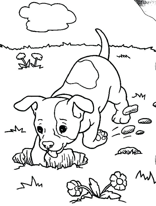 600x790 Small Dog Coloring Pages Chihuahua Dog Digging A Hole Coloring