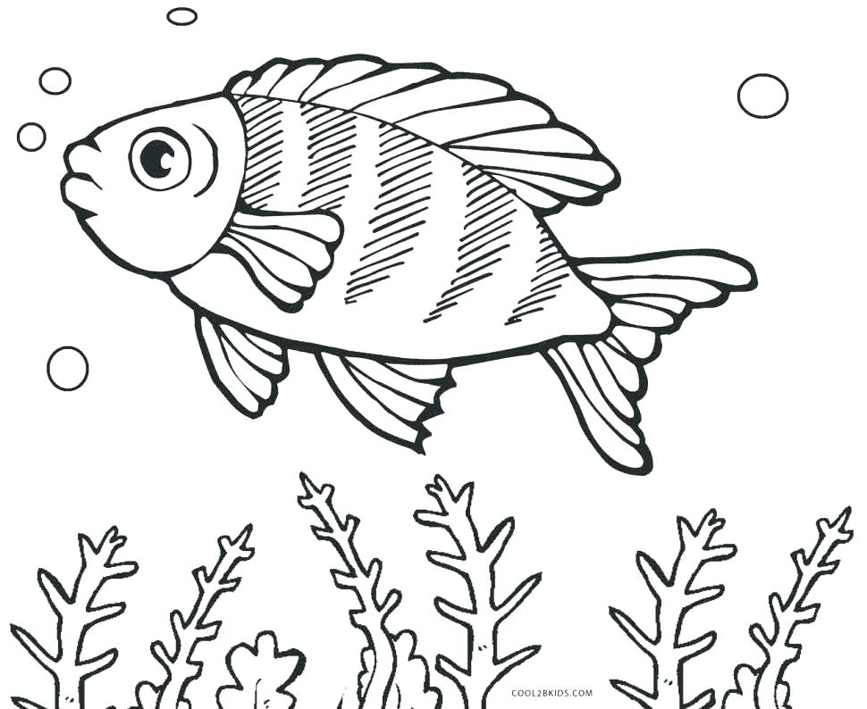 970x794 Entertaining Fish Coloring Pages New Color Free Rainbow Printable