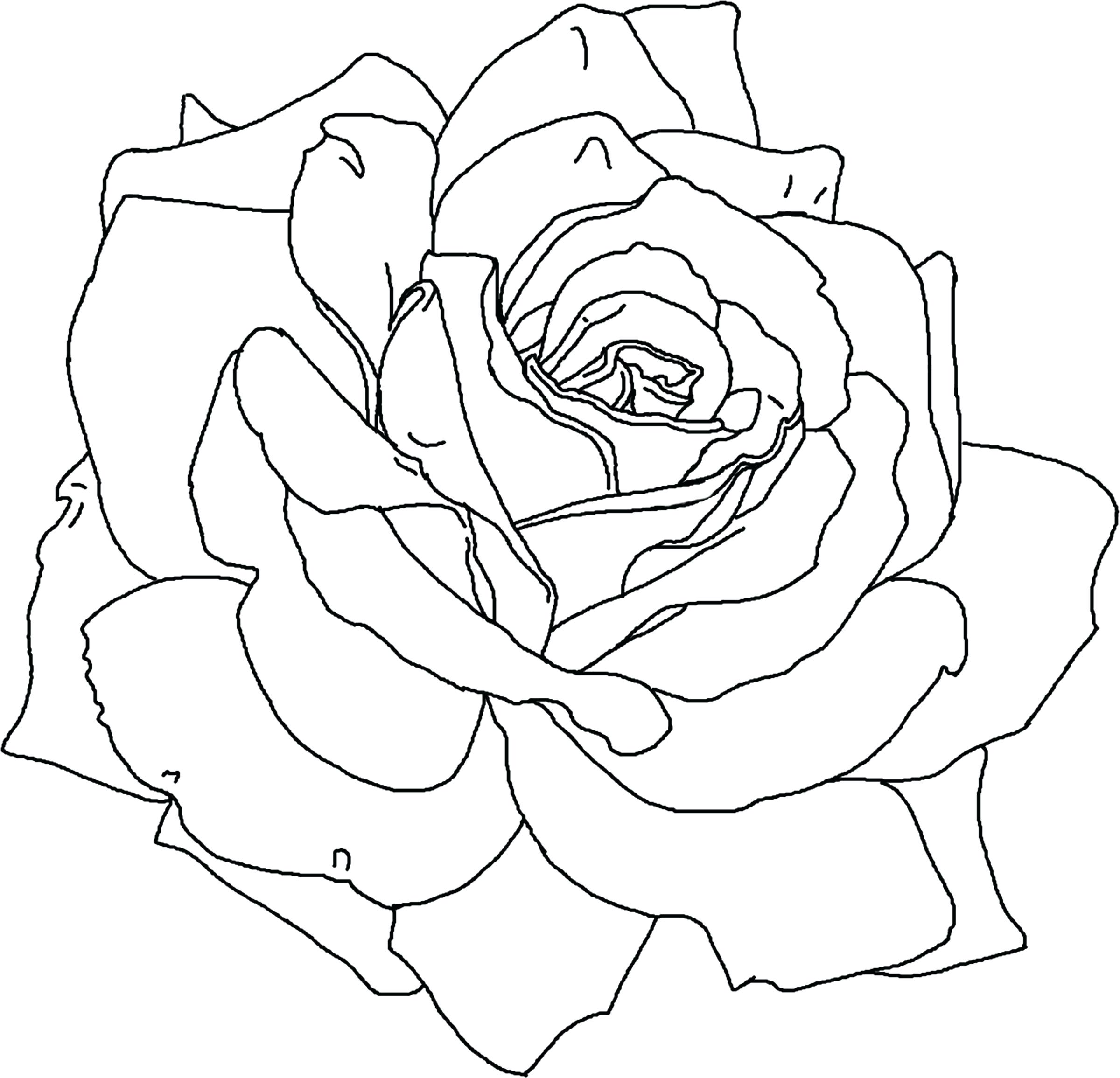 2400x2311 Coloring Pages ~ Flower Coloring Pages Printable Hard For Girls