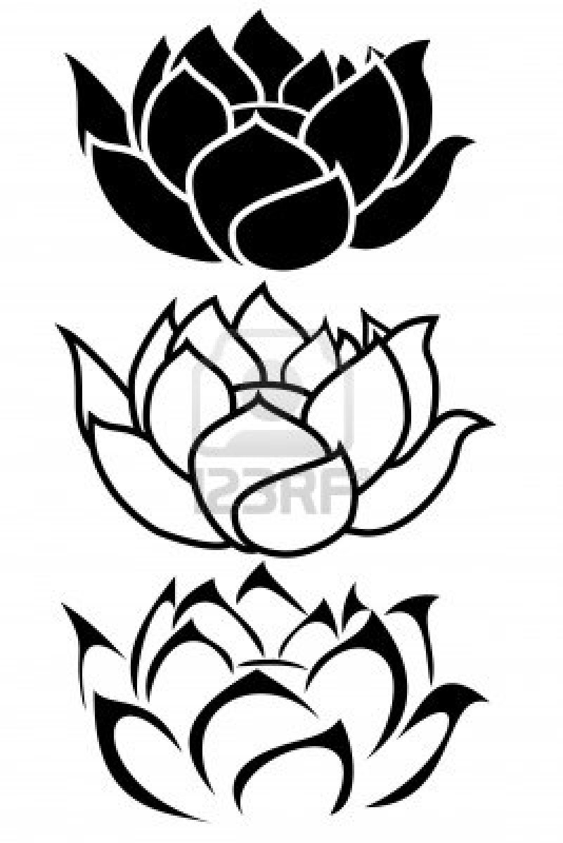 801x1200 Drawn Lotus Small