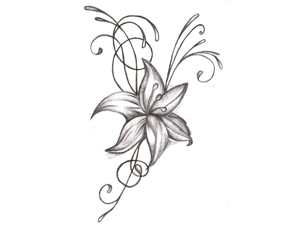 1024x768 Flowers Drawing Tattoo