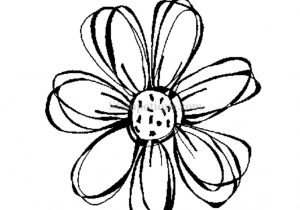 300x210 Small Flower Drawings Small Flower Drawings Small Flowers Drawing