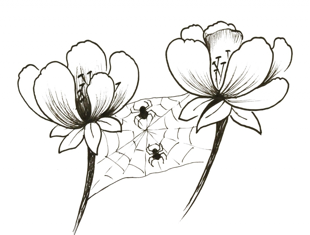 1024x776 Small Flower Drawings Small Flowers Drawing 1000 Images About