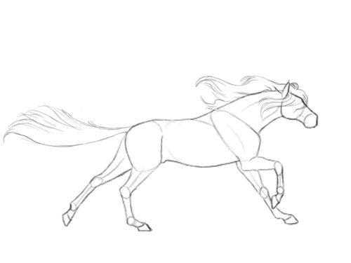 500x375 8) Horse Gif Tumblr Diy Drawings Horse And Draw