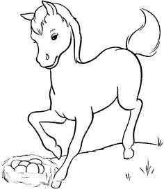 236x272 Cow 10 Adult Coloring Pages Animal Colouring Pages