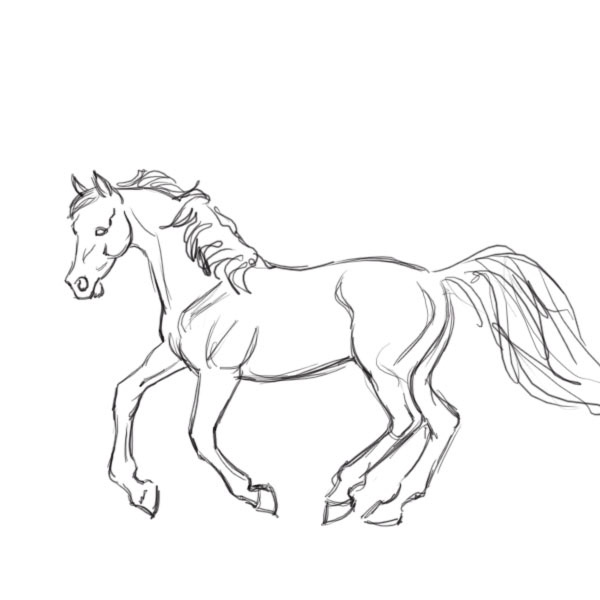 600x600 Draw A Horse