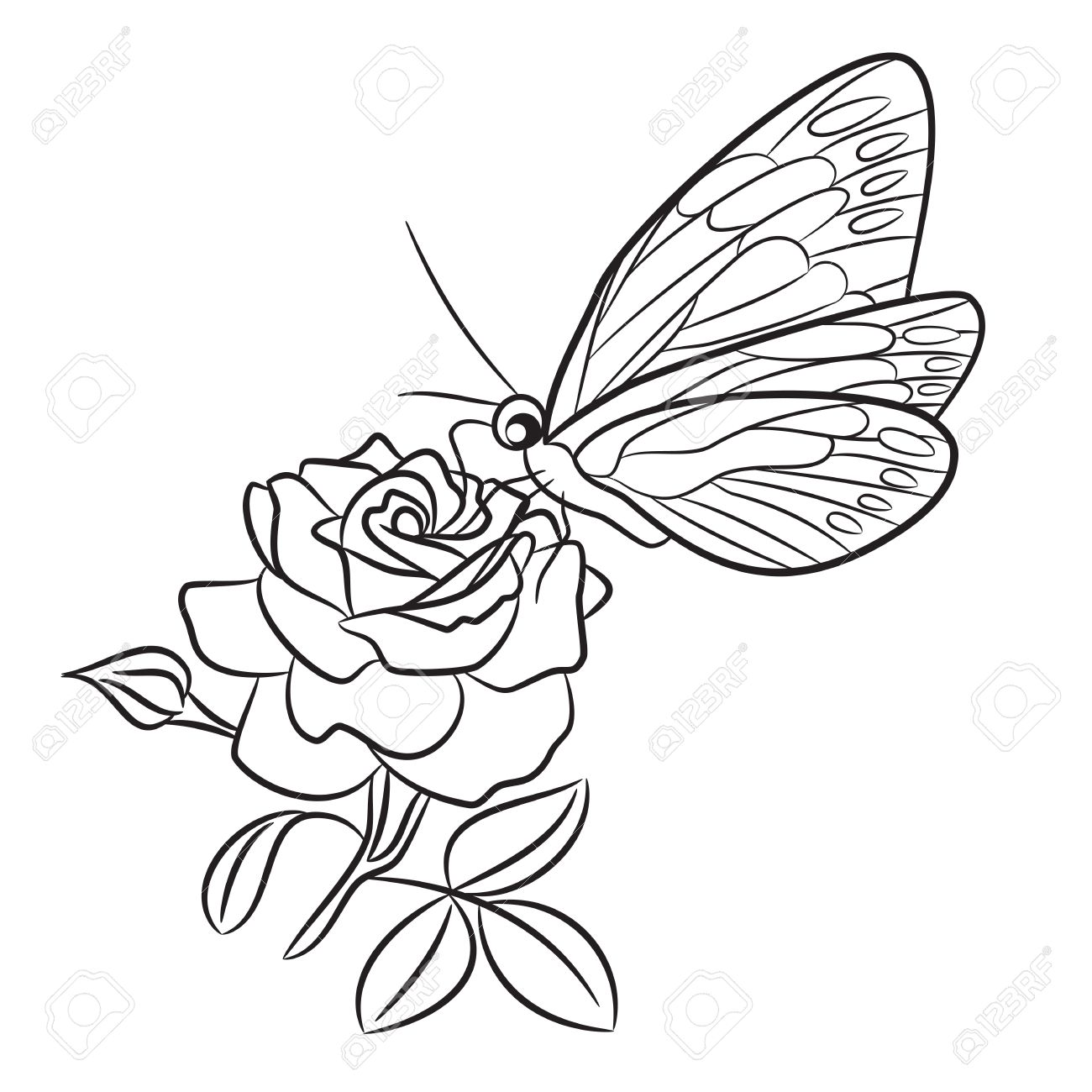 1300x1300 Butterfly On Blooming Rose, Small Bud And Leaf. Black Easy Drawing