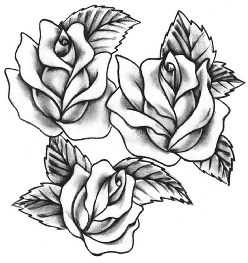 966x1024 Rose Tattoo Stencil Designs