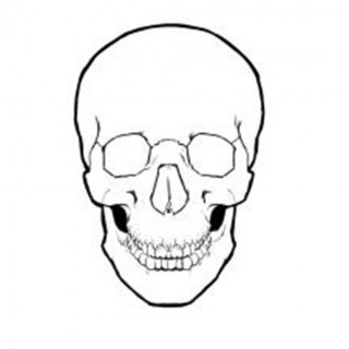 320x320 Tag For Simple Kitchen Design Ideas Skull Drawing Best Images