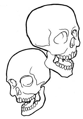 284x406 Dual Skulls Two Small Skull Sketches Joe 13
