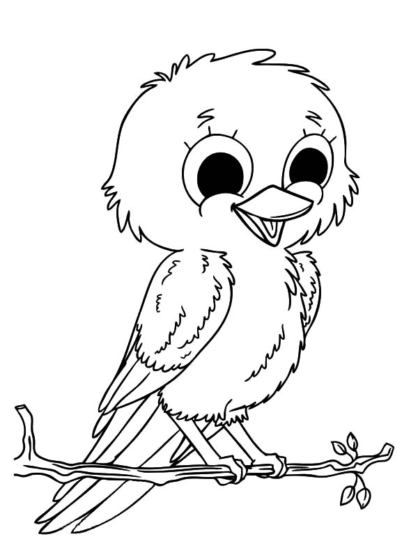 600x800 Smiling Baby Canary Bird Coloring Pages Best Place To Color