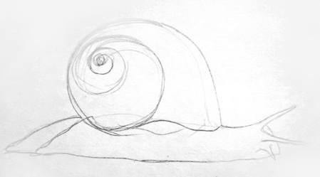 449x249 How To Draw A Snail