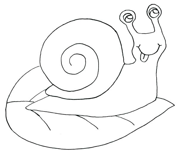 Snail Drawing at GetDrawings.com | Free for personal use Snail ...