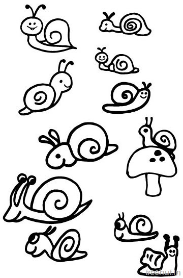 360x545 Cute Snail Drawing And Coloring Pages