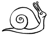 207x150 Drawing Of A Snail Coloring Free