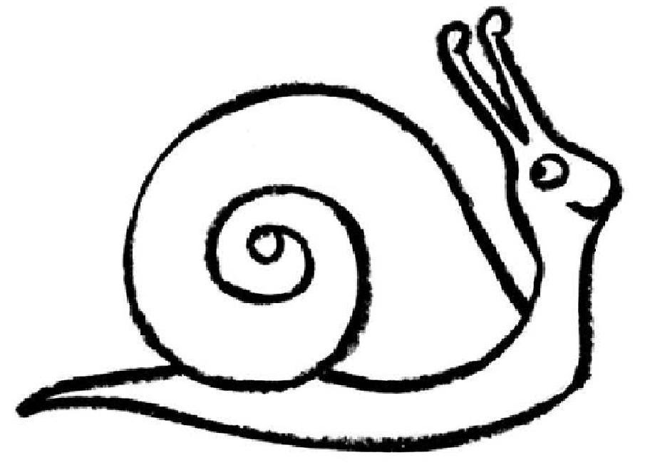 snail line drawing at getdrawings com free for personal use snail