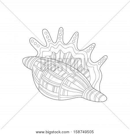 450x470 Lambis Snail Shell Sea Underwater Vector Amp Photo Bigstock