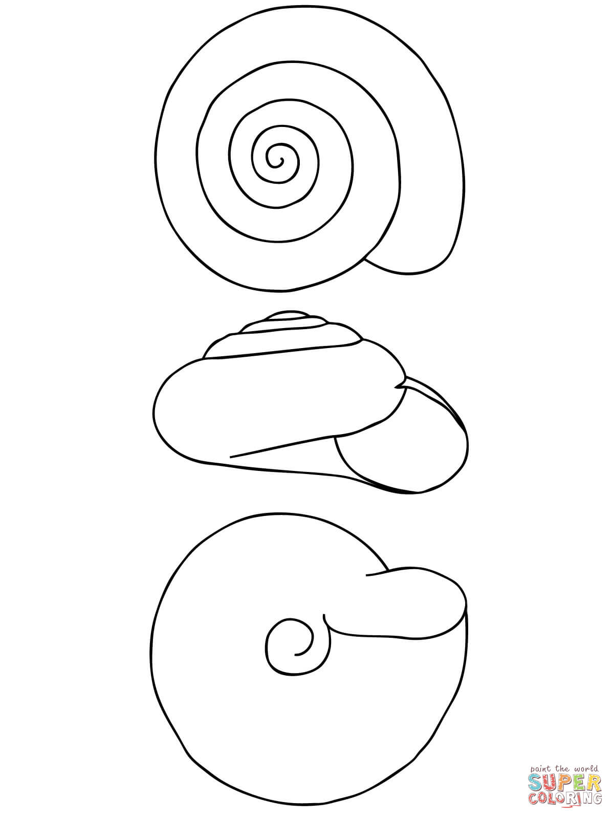 1200x1600 Snail Shell Coloring Page Free Printable Coloring Pages
