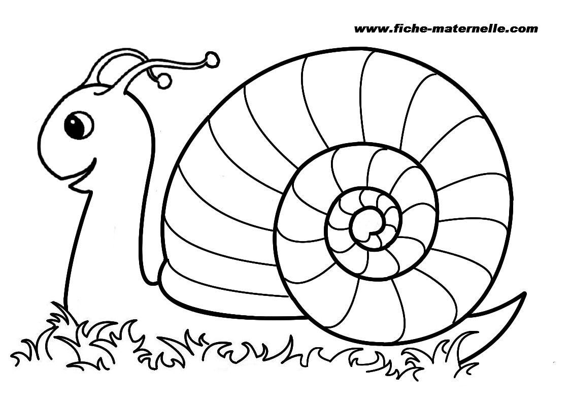 1123x794 Snail