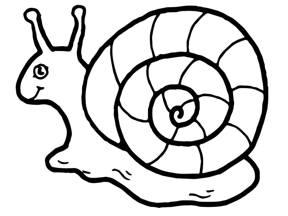 1200x900 Snail Coloring Page Smile For Kids Printable Cute Pages Free