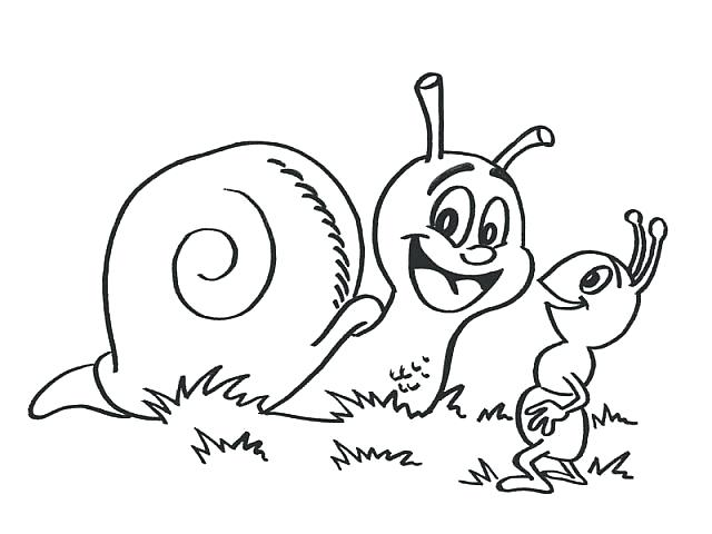 640x480 Snails Coloring Pages Animal Coloring Pages Slugs And Snails