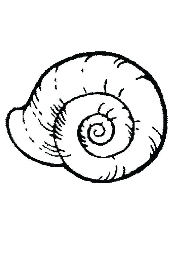 600x849 Snails Coloring Pages Sea Snail Free Coloring Page Slugs