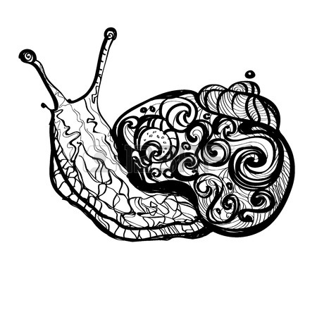 450x450 Hand Drawn Doodle Vector Outline Snail Illustration Decorated
